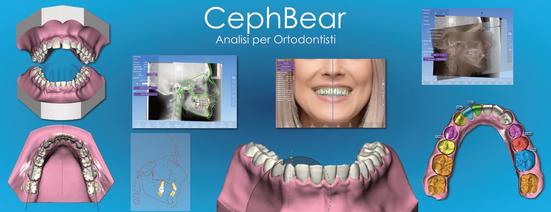 CephBear Splash Image